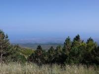Foto SicilyExcursions - 29