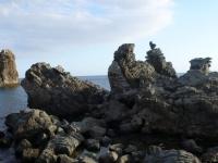 Foto SicilyExcursions - 36