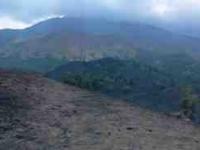 paesaggio-monti-sartorius-2011-08-17-15-24-17